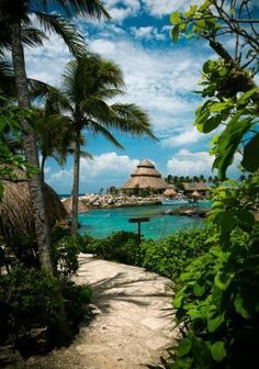 Take a trip to Xcaret, an eco-archeological park nestled on the Caribbean coastline about 47 miles southwest of Cancún's city center. Here you'll find more than 40 attractions, like the Coral Reef Aquarium, the Tropical Jungle Trail and the Living Museum of Orchids.
