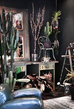 FLO Atelier Botânico e Micasa lançam objetos de arte botânicos