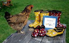 Chicken Sloggers