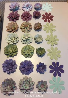 Succulent Garden Suite Ink and cardstock suggestions by Laura Kant  (020217)  [Stampin' Up! (dies) Succulent Framelits; (stamps) Oh So Succulent]