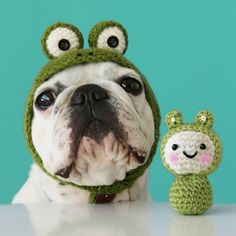 10 Adorable Examples of Animals in #Crochet: Is it a Dog or a Frog? With matching amigurumi toy.
