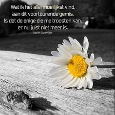 So true... :( plus the daisy.. :(