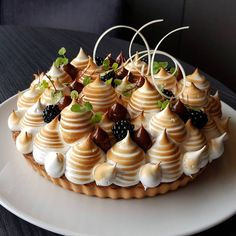 Look at this creative take on a classic meringue pie, or pavlova. The added fruit topping and pipped dollops of chocolate just makes this dessert stand out! Fancy Desserts, Gourmet Desserts, No Bake Desserts, Just Desserts, Delicious Desserts, Yummy Food, Desserts For A Crowd, Gourmet Foods, Plated Desserts