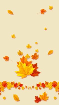 Cute Fall Wallpaper, Iphone Wallpaper Fall, Holiday Wallpaper, Wallpaper Backgrounds, Beautiful Wallpaper, Iphone Backgrounds, Iphone Wallpapers, Fall Background, Background Pictures