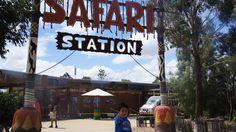 Fim de semana...Safari