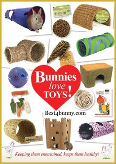 rabbit toy Good for guinea pigs too Bunny Cages, Rabbit Cages, Rabbit Toys, Lionhead Rabbit, Bunny Rabbit, Hamsters, Chinchillas, Diy Bunny Toys, Bunny Room