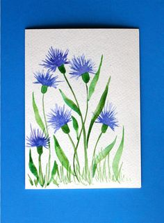 /watercolor-card-no-36-bachelor-buttons