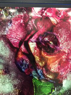 A Level Photography- Macro flowers in ice