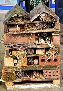 Zelf een insectenhotel bouwen in je tuin