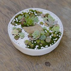 Zen succulent dish gardens are perfect table centerpieces!