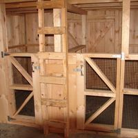 goat barn... Im thinking dog kennels in the barn for our rascals during the day with outside runs!!