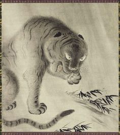 Tiger        猛虎図        Japanese, Edo period, 19th century      Artist Unknown, Japanese,    Dimensions      Image: 103.8 x 93.6 cm (40 7/8 x 36 7/8 in.)  Medium or Technique      Hanging scroll; ink and light color on paper  Classification      Paintings     Type      hanging scroll  Catalogue Raisonné      KJM2-Kano-433  Accession Number      11.6664  Not on view