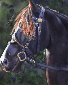 Friesian Horse Art black Print of my watercolor by rachelsstudio - Friesian Sunshine