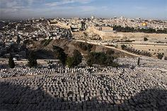 Le cimetière du mont des Oliviers - Visite - Israel and You
