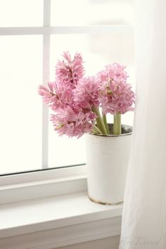 Pink hyacinths in the window sill Love Flowers, Fresh Flowers, Spring Flowers, Beautiful Flowers, Spring Blooms, Deco Floral, Spring Home, Daffodils, Windows