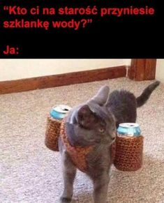 Polish Memes, I Am Awesome, Words, Funny, Animals, Bullet, Marriage, Animales, Animaux