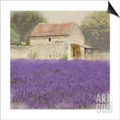Tuscan Lavender SwitchArt™ Print by Bret Staehling at Art.com