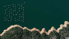 New Bullards Bar Reservoir, Yuba County, California, The United States 20 Amazing Aerial Photos From All Over The World