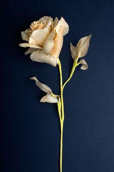 hoja de maíz flor rosa: