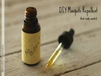 DIY Mosquito Repellent That Really Works-not sure about using Neem oil on the kiddos. Gotta research that one beforehand.