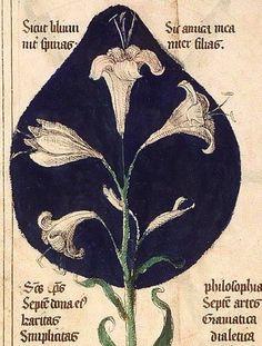 Liber Floridus», Lambert of St. Omer, Lille and Ninove, 1460