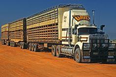 australian vehicles | Australia Road Train Vehicle (47826). australia, road : Photo Agency ... Train Truck, Road Train, Old Bangers, Western Star Trucks, Big Girl Toys, White Truck, Show Trucks, Kenworth Trucks, Heavy Machinery