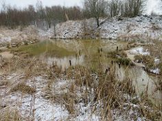 Fosforiidimaa / Phosphate Rock mining area in Estonia Snow, Rock, Search, Outdoor, Outdoors, Skirt, Searching, Locks, The Rock