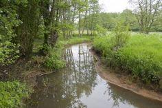 Het Amerdiep, onderdeel van Nationaal Park De Drentsche Aa