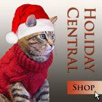 FiberWild - 25 - 50% off 'tons of yarn' Starts Friday 27 December 2014