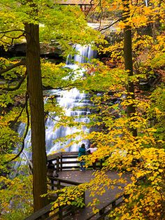"Easy ""staycation"", one of Midwest Living's top 25 places for fall color, Cleaveland's Cuyahoga Valley National Park. Where mules once pulled canal boats, walkers and bicyclists now stream along the 20-mile Ohio and Erie Canal Towpath Trail. More ambitious hikers choose from an additional 100 miles of trails. Families tour a 19th-century living history museum, and the Cuyahoga Valley Scenic Railroad chugs past heron and bald eagle nests (and offers ghost train rides in autumn!)."