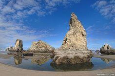 Cool world of Oregon's coast by AnimalExplorer, via Flickr