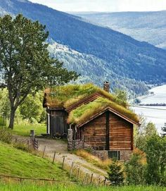 Country cabin in Norway. Cut from the logs of the woods it is surrounded by.