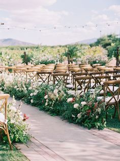 23 of the Best Vinery Wedding Details to Stand You Out vineyard wedding ceremony with floral and greenery lined aisle. Wedding Tips, Wedding Details, Wedding Events, Wedding Ceremony, Wedding Stuff, Wedding Bells, Wedding Backdrops, Wedding Church, Ceremony Backdrop