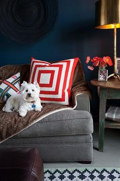 Zoe Johns and Max Catalano - Dark blue wall color with black basket wall decor. Gray sofa, red and white pillow and faux fur throw. Distressed side table with contemporary brass table lamp. Dark Blue Walls, Navy Walls, Dark Teal, Black Walls, Grey Couches, Gray Sofa, Westies, San Francisco Houses, Gray Bedroom