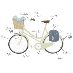 Heels on wheels - Hardie Grant publishing - Clare Owen Illustration