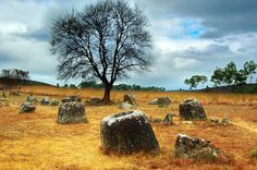 "What are more than 2,500 ancient stone ""jars"" doing scattered in the plains of Laos?"