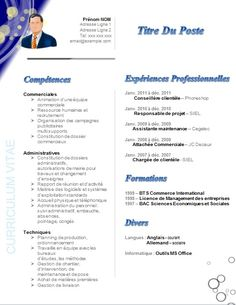 write your own cv
