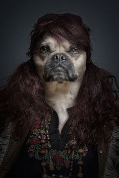 Funny Portraits of Dogs Dressed Like Humans - My Modern Metropolis I know this isn't a pug but colour is so similar