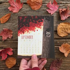 For the nature lover | 17 Coolest Calendars For 2017