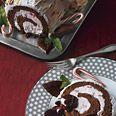 Frozen Chocolate-Peppermint Buche de Noel