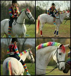 Rainbow horse :3