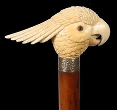 English Ivory Tropical Bird Cane-Late Century-Well carved, large and beautiful head with glass eyes, silver . Raising Canes, Cane Handles, Cane Stick, Walking Sticks And Canes, Cannes, Umbrellas Parasols, Carving Designs, Tropical Birds, Bone Carving