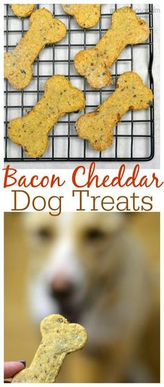 Easy recipe for bacon cheddar homemade dog treats! Only 4 ingredients &…