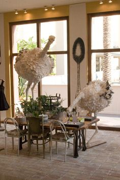 Curious and friendly ostriches in the Fall 2009 interior display at the Newport Beach Anthropologie by Ruthi Auda