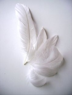 One of the angels is missing a few feathers from her/his wings! ✞❤