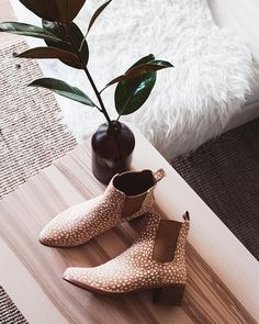 Talk about a lazy Monday afternoon @substanceblog withour 'Cardinal' boots in deer print.  Psst.. did you hear we are having an online sale? For 48-hours only all stock will be reduced up to 60%. Join us on Tuesday 14th 8pm.