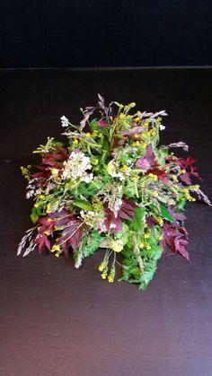❈ Fleurs Foncées ❈ dark art photography flowers & botanical prints - Wild flowers...