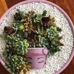 Succulent living art by Franca Made with love