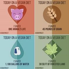 Vegan diets are the healthiest for your body AND the planet. By boycotting meat…