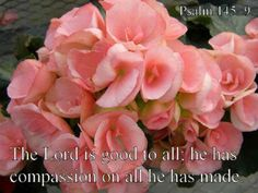 PSALM  145:9 - The Lord is good to all;  he has compassion on all he has made.      http://mwordsandthechristianwoman.com/